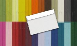BASIS COLORS - 6in x 9in BOOKLET Envelopes - 1000 PK