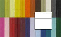 BASIS COLORS - 6.5 SQUARE Envelopes - 1000 PK