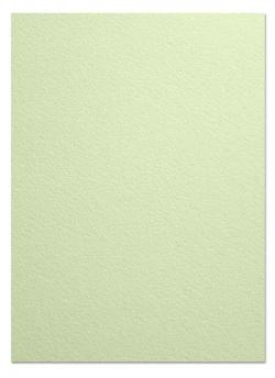 Arturo - FULL SIZE - 96lb Cover Paper (260GSM) - CELADON - (25 x 38)