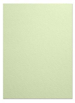 Arturo - FULL SIZE - 96lb Cover Paper (260GSM) - CELADON - (25 x 38)