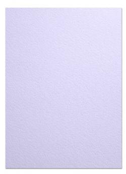 Arturo - FULL SIZE - 96lb Cover Paper (260GSM) - LAVENDER - (25 x 38)