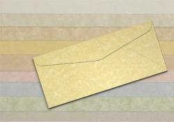 Wausau Astroparche - No. 10 Envelopes - 500 PK