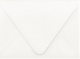PS Shimmer Metallic - Euro Flap - A6 ENVELOPES - QUARTZ - 200 PK