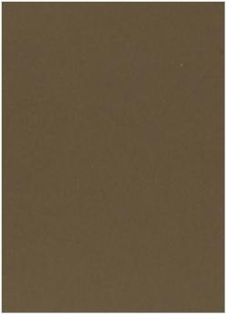 Crush Hazelnut - 28X40 (72X102cm) Paper - 81lb Text (120gsm) - 250 PK