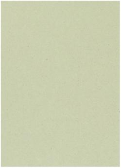 Crush Kiwi - 28X40 (72X102cm) Paper - 81lb Text (120gsm) - 250 PK