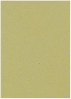 Crush Olive - 28X40 (72X102cm) Paper - 81lb Text (120gsm) - 250 PK