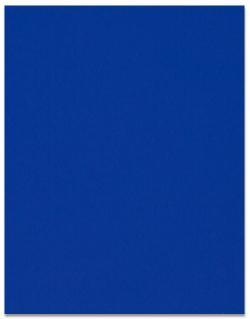 Curious SKIN - Indigo - 27X39  Card Stock Paper - 100lb Cover (270gsm) - 100 PK