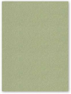 Neenah CLASSIC CREST 8.5 x 11 Cardstock Paper - Tarragon - 80lb Cover - 250 PK
